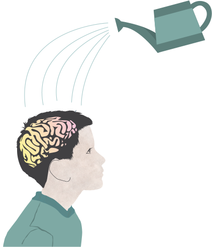 Brain Training & Cognitive Development for Primary School Students